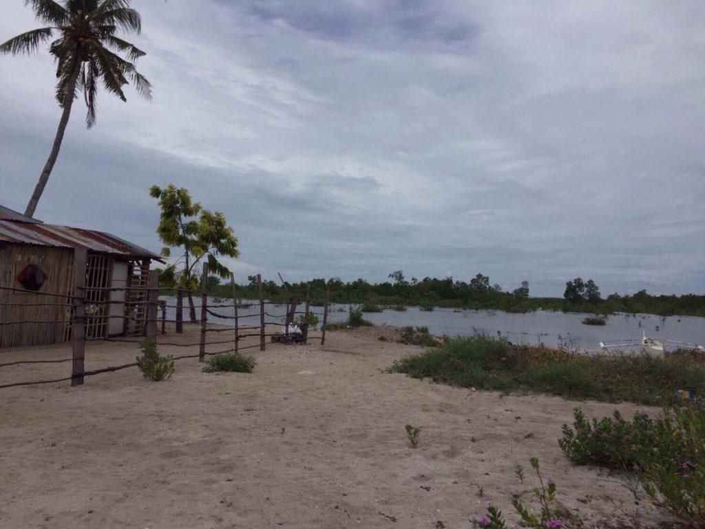オランゴ島へのショートトリップ