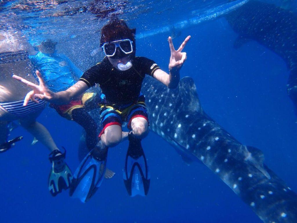 オスロブのジンベエザメと写真をとる留学生